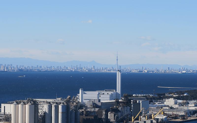 千葉ポートタワーから見えるスカイツリー