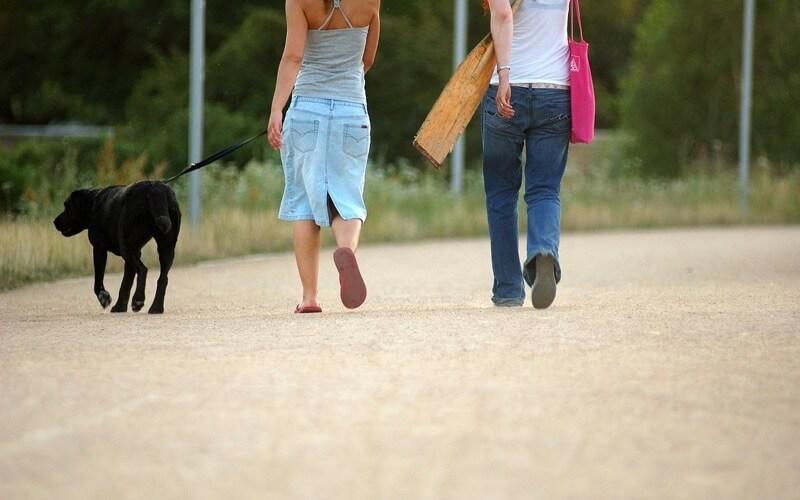 犬の散歩中の女性