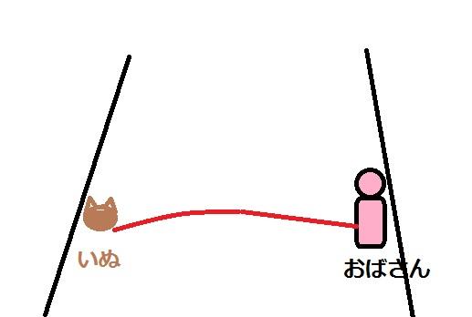犬と女性の位置関係図